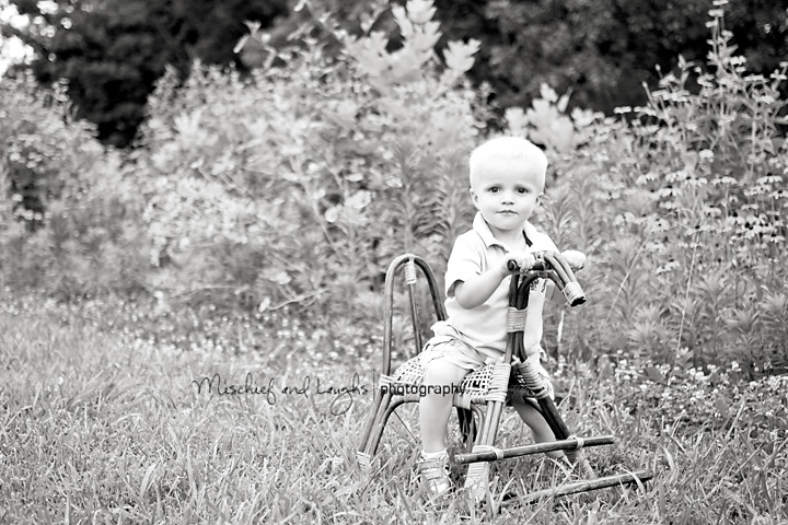 Baby sits on a rocking horse