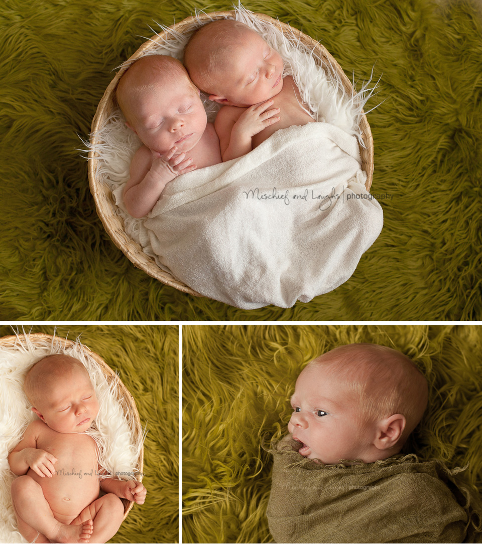 3 week old twin babies in a basket