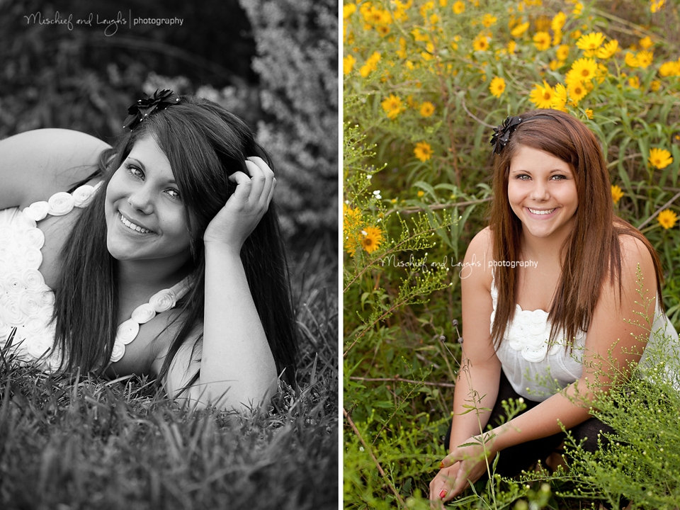 outdoor pictures in a field of wildflowers photography