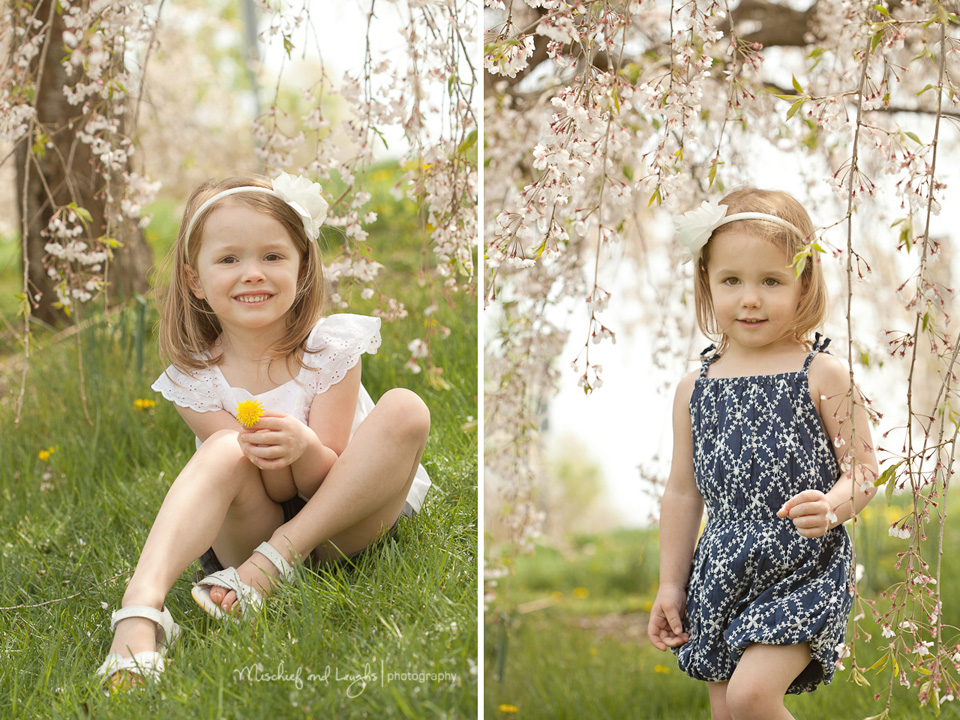 spring outdoor pictures