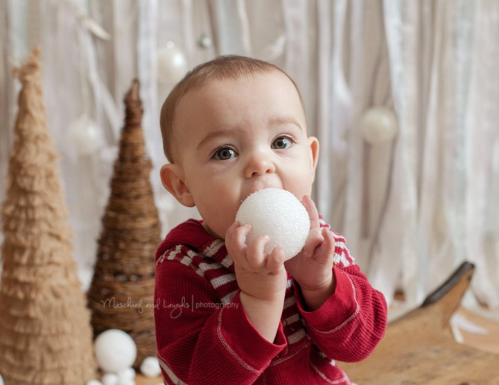 Baby's First Christmas Mini Sessions