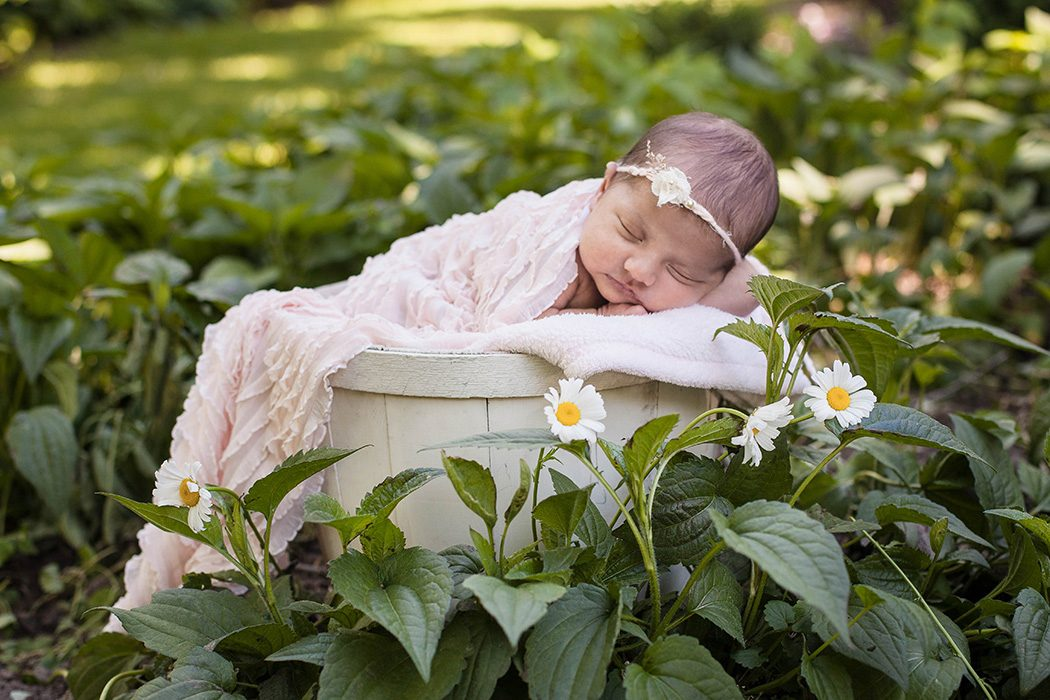 outdoor newborn photos finger lakes NY
