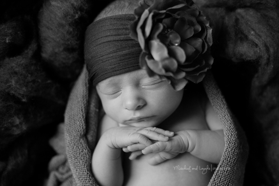 Fall inspired Newborn Pictures, Cincinnati newborn photos, Mischief and Laughs