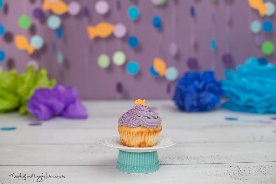 cake smash cincinnati