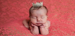 cincinnati newborn photographer