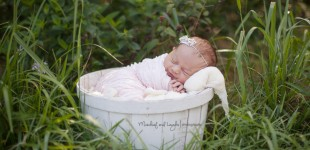 finger lakes newborn photographer