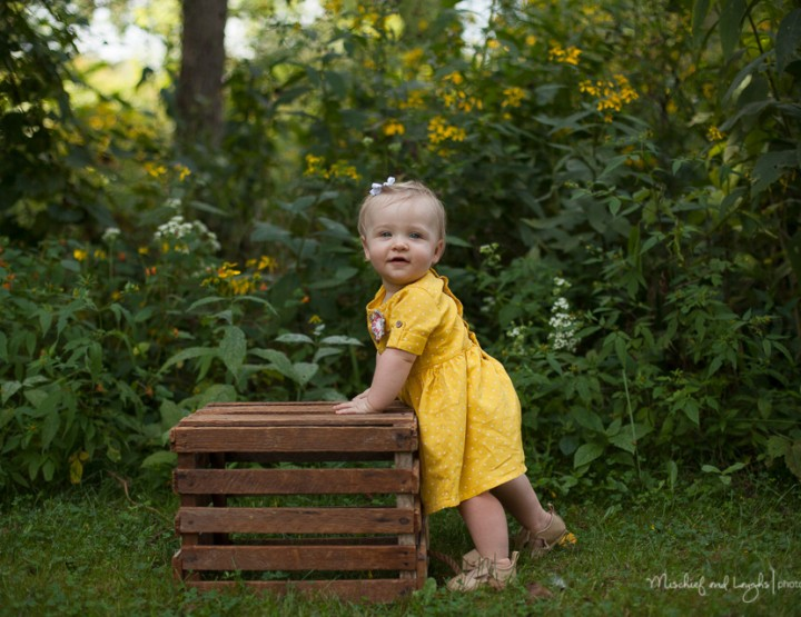 In the Woods, Finger Lakes Region Family Photographer
