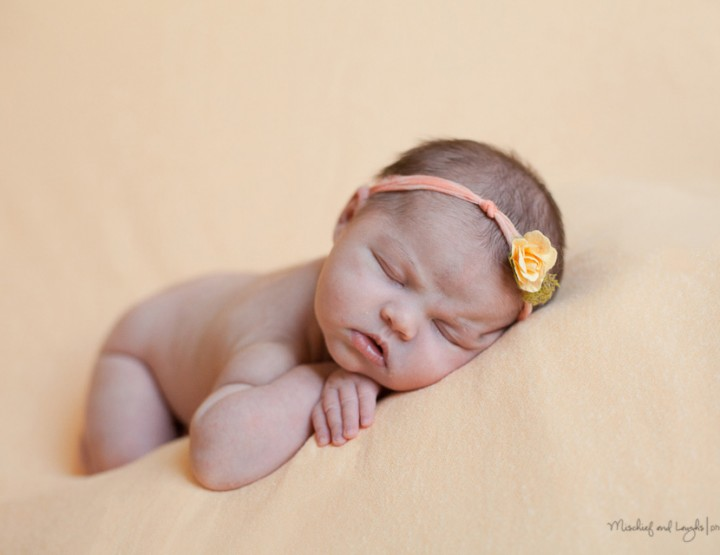 Little Sister Love, Finger Lakes Area Newborn Photographer