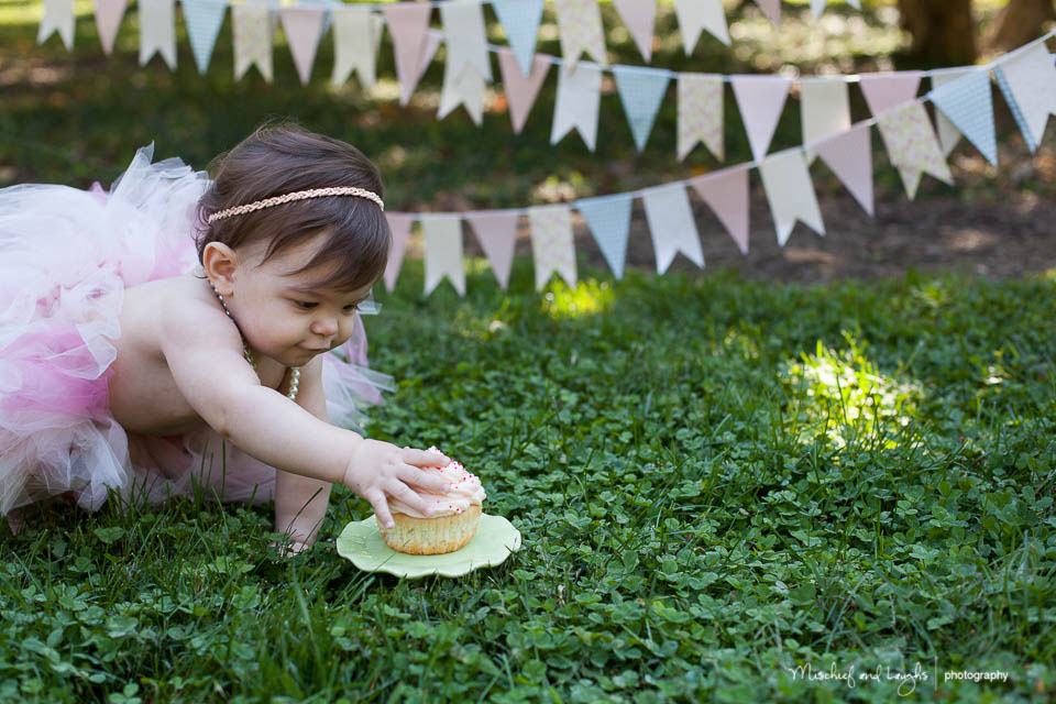 First Birthday Cake Smash, Rochester baby photographer, Mischief and Laughs