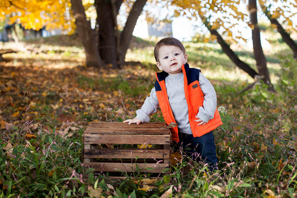 Fall baby pictures, Mischief and Laughs Photography, Rochester NY
