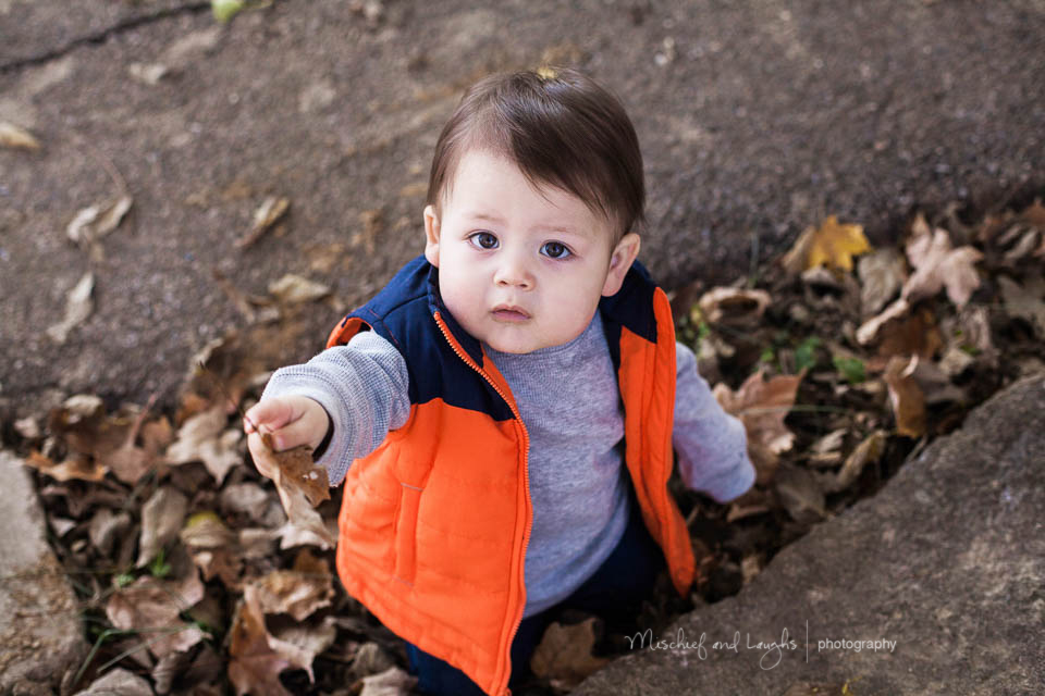 Fall baby pictures what to wear, Mischief and Laughs Photography, Rochester NY