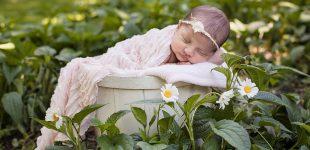 Outdoor newborn photos, Finger Lakes Newborn Photographer