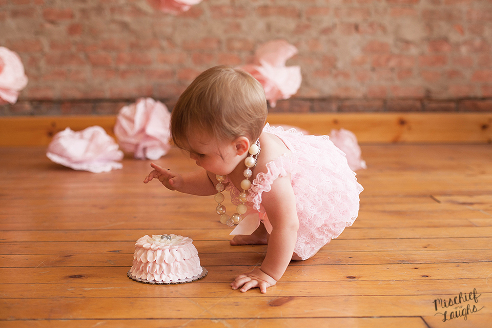 first birthday photos in Canandaigua NY, vintage pink Cake smas