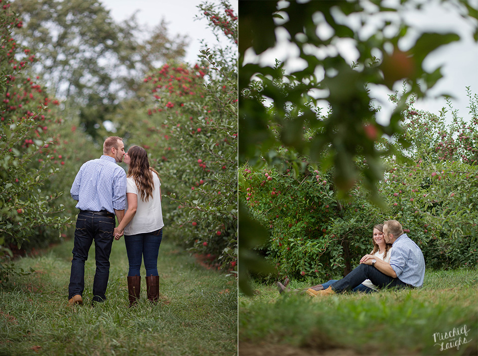 apple orchard engagement session, Sodus Point NY wedding photographer, Mischief and Laughs Photography