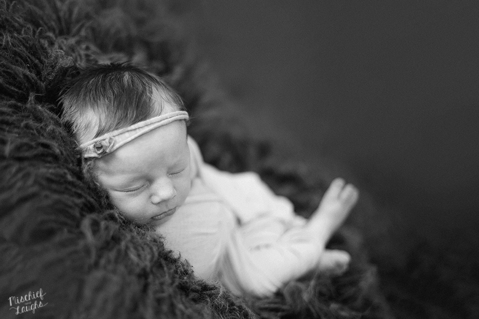 Studio Newborn Session, Rochester Newborn Photographer, Mischief and Laughs Photography