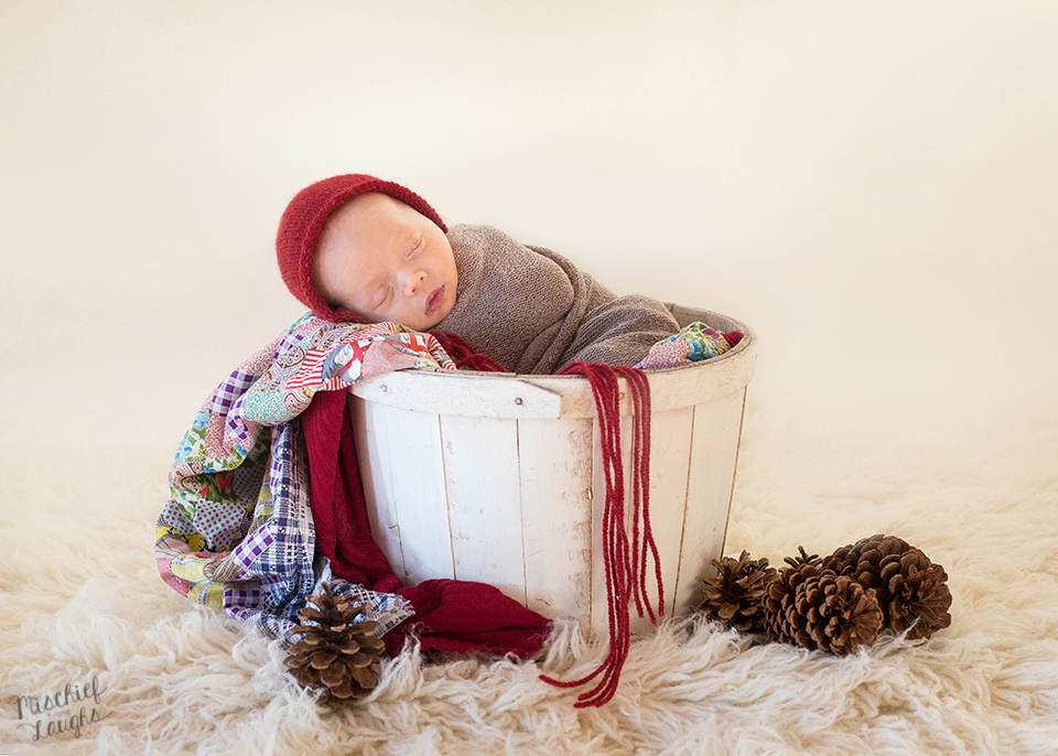 Christmas Newborn baby photographer Canandaigua NY, Mischief and Laughs Photography