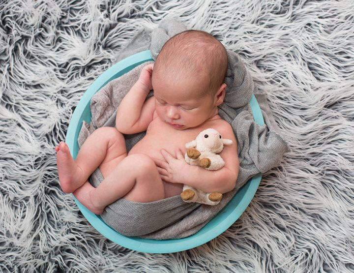 Little Lamb, Canandaigua Newborn Photographer