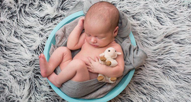 Little Lamb, Canandaigua Newborn Photographer