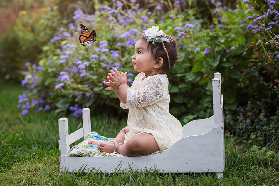 Baby picture with butterfly, Cincinnati first birthday photographer