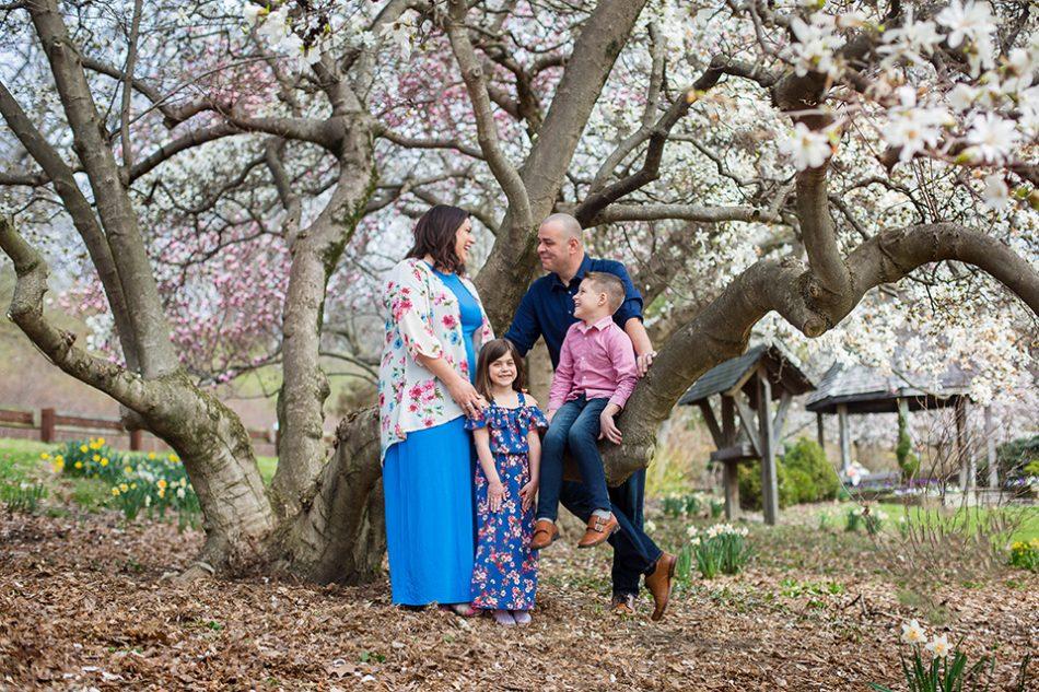 Magnolia tree mini sessions cincinnati oh